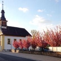 Kirche-Baeume